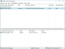 SoftEther VPN клиент windows
